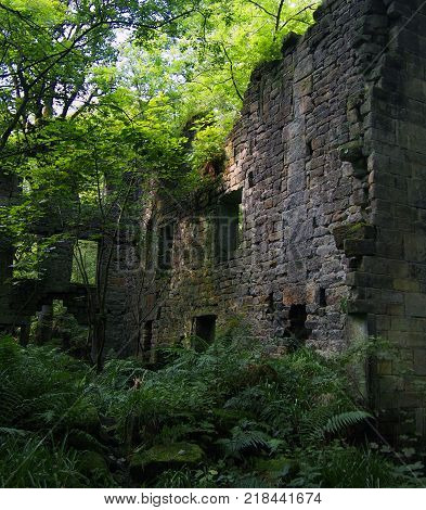 the ruins of staups mill near hebden bridge in woodland in west yorkshire