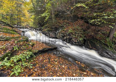 Conestoga Falls a beautiful waterfall in Pennsylvania's Ricketts Glen State Park cascades and slides through an autumn landscape.