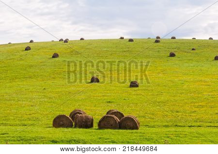 Drying straw bales in the fields after harvest - Holloko, Hungary