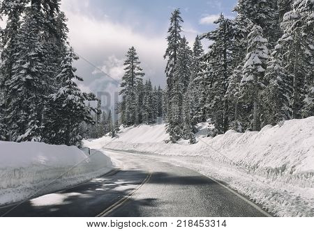Winter landscape with road in snowy forest.