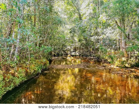 Waterway in tropical rainforest in Thailand. Beautiful in the nature.