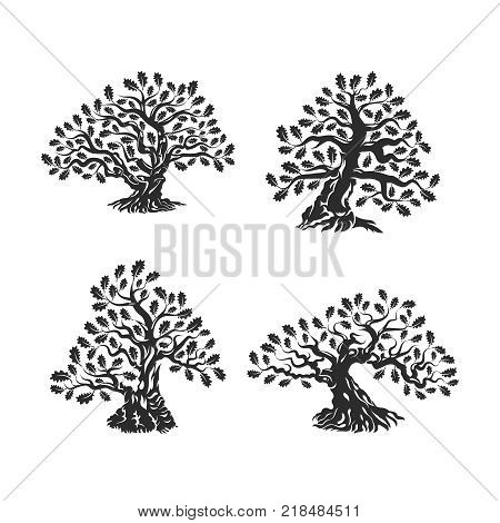 Huge and sacred oak tree silhouette logo isolated on white background. Modern vector national tradition green plant icon sign design set.Premium quality organic bonsai logotype flat illustration.
