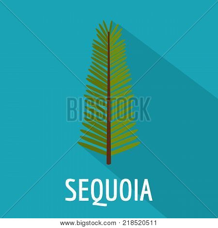 Sequoia leaf icon. Flat illustration of sequoia leaf vector icon for web