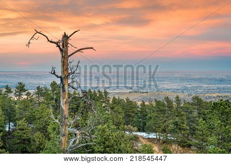 dusk over plains and foothills of northern Colorado as seen from Horsetooth Mountain near Fort Collins