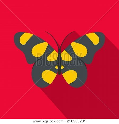 Butterfly in wildlife icon. Flat illustration of butterfly in wildlife vector icon for web