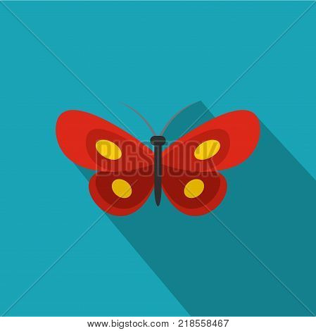 Tiny butterfly icon. Flat illustration of tiny butterfly vector icon for web