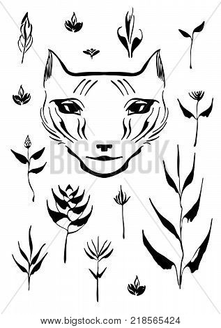 Black hand drawn brush paint decorative set. Vector illustration with flowers leaves and cat head painted by ink. Isolated elements for design on white background.