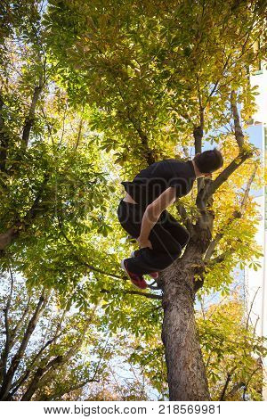 Young man doing a side flip or somersault while practicing parkour on the street with a tree in the background.