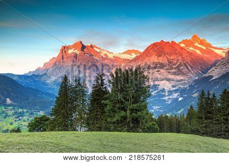 Stunning alpine landscape and magical sunset with Wetterhorn peak in background, Grindelwald, Bernese Oberland, Switzerland, Europe