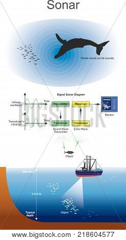 Sonar signal systems are generally used underwater for range finding and detection. Active sonar emits an acoustic signal or pulse of sound into the deep underwater.