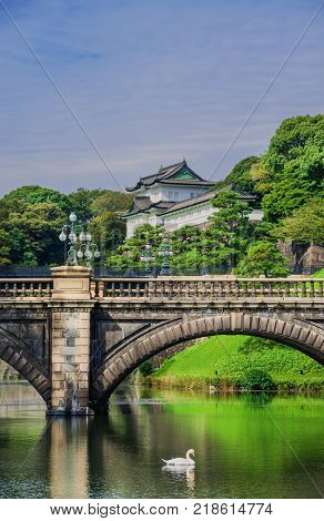 Tokyo Imperial Palace Outer Gardens with the famous Nijubashi Bridge and a swan