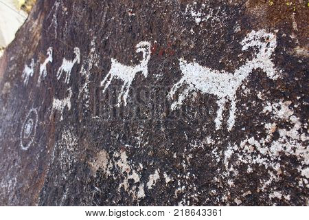 Series of goat petroglyphs on a rock wall at Grapevine Canyon Nevada