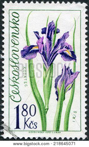 CZECHOSLOVAKIA - CIRCA 1973: A stamp printed in the Czechoslovakia shows the flower Iris circa 1973