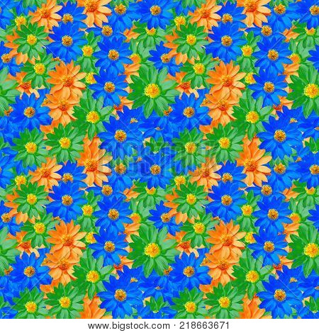 Adonis. Texture of flowers. Seamless pattern for continuous replicate. Floral background photo collage for production of textile cotton fabric. For use in wallpaper covers
