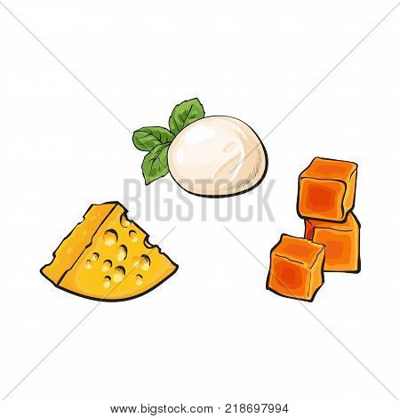 vector sketch wedge of soft italian buffalo mozzarella with basil leaf, cubics of hard cheddar and emmental cheese with holes set for your design. Isolated illustration on a white background.