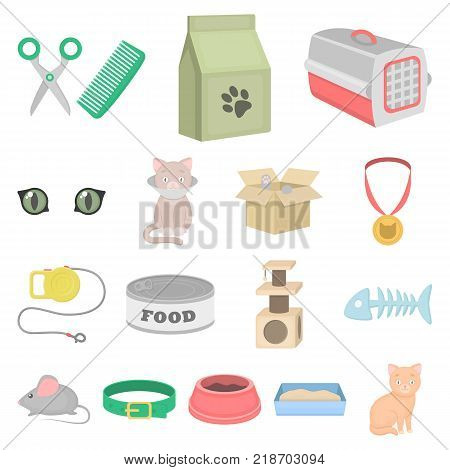 An animal cat cartoon icons in set collection for design. Caring for a cat vector symbol stock  illustration.