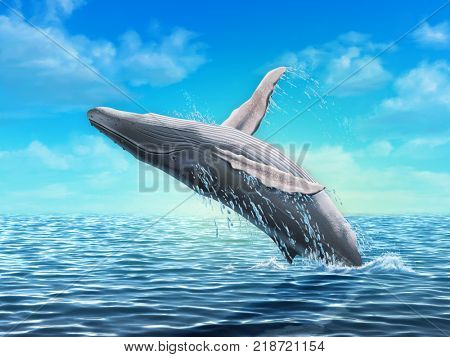 Humpback whale jumping out of water. Digital illustration.