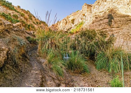 Waterfall at Ein Gedi Nature Reserve, Israel.