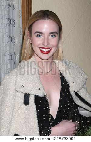 LOS ANGELES - DEC 16:  Ashleigh Brewer at the Heather Tom, James Achor, Zane Achor Christmas Party at their private residence on December 16, 2017 in Glendale, CA