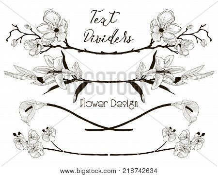 Black Hand Drawn Floral Text Dividers, Line Borders with Branches, Herbs, Plants and Flowers. Decorative Outlined Vector Illustration. Flower Design Elements. Lily Flower, Cherry Blossom, Calla, Orchid