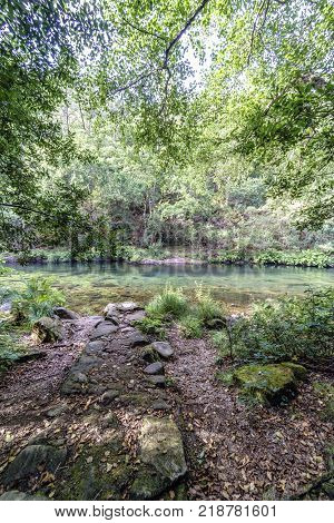 Very irregular stone path on the shore with rocks and tree cover and vegetation of the river Eume in Galicia Spain. With a very calm stream and very transparent water