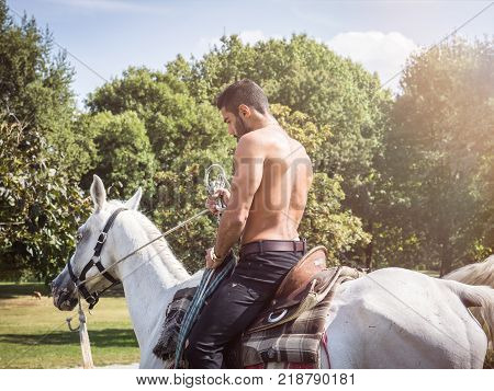 Handsome muscular man without shirt riding horse in natural bright sunlight.