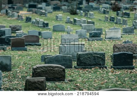 Back Of Gravestones In A Old Cemetery In Autumn