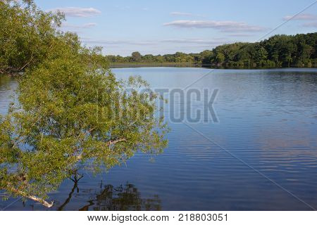 View of Pierce Lake at Rock Cut State Park in northern Illinois
