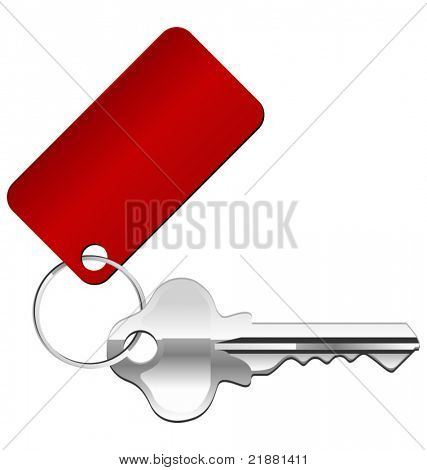 vector key icon with a red label