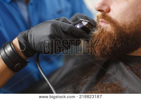 Male Professional Hairdresser Serving Client, Shaving Thick Big Beard Straight Razor. Ginger Handsom