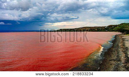 Landscape of Langano lake coastline at Oromia, Ethiopia