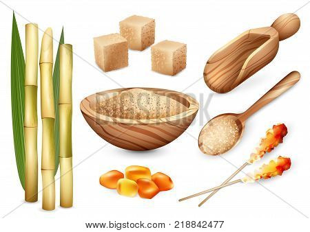 Cane sugar set with isolated images of sand sugar in wooden plate spoon bail and candy sweets vector illustration