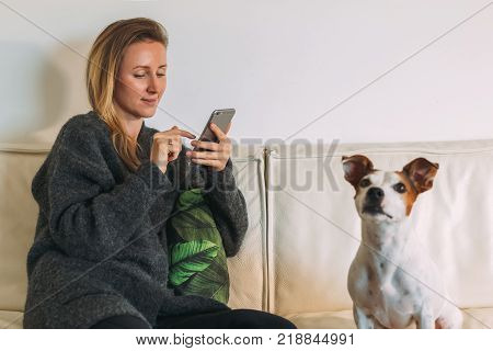 Front view. Young woman is sitting on white couch, using smartphone. There is dog nearby. Girl working, learning online, checking email. Distance work, online marketing, education. Social network.