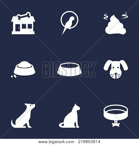 Collection Of Dish, Neckband , Bird Elements.  Set Of 9 Mammal Icons Set.