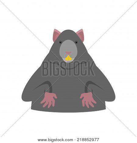 Rat isolated. Big Mouse. Rodent vector Illustration