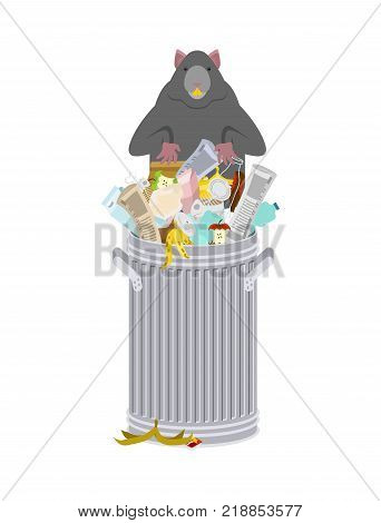 Rat in garbage can. Rodent in trash. big mouse in Dumpster. Vector illustration