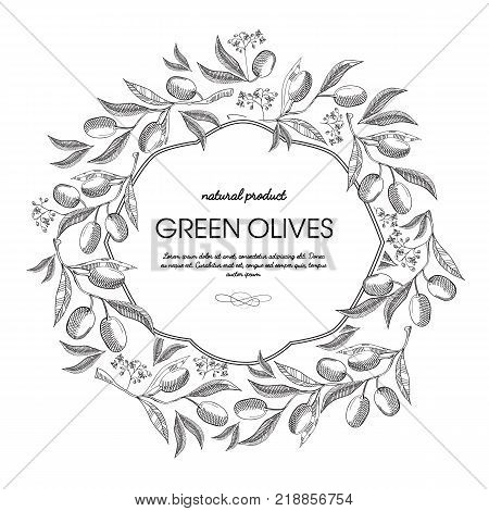 White colored filigree frame with olives bunches, stem and elegant squiggles hand drawn sketch vector illustration
