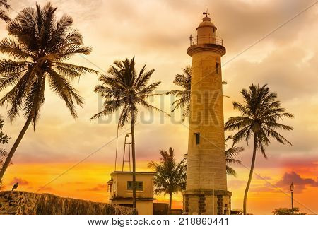White lighthouse Dondra and tropical palm trees against the background of a fantastic sunset Sri Lanka island .