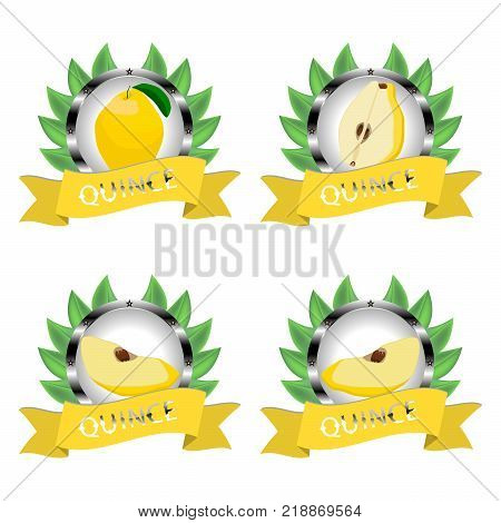 Abstract vector icon illustration logo for whole ripe fruit colorful quince slice half.Quince pattern consisting of card label natural design sign tasty food.Eat sweet fresh fruits quinces on health