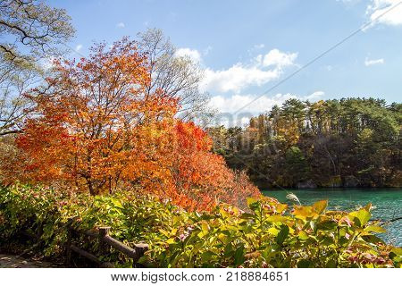 The landscape of colorful leaves of trees at the turquoise colored lakeside in autumn