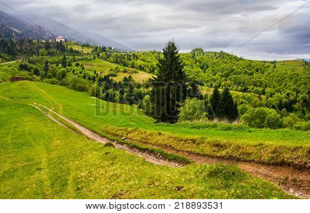 dirt road through grassy in rural area. beautiful countryside of Carpathian mountains on an overcast springtime day