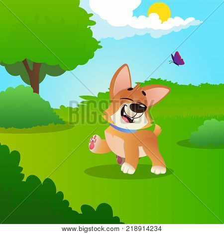 Funny little corgi walking by green meadow in park. Sunny summer day. Colorful nature landscape with trees, bushes, blue sky, white clouds, flying butterfly. Cartoon vector illustration in flat style.