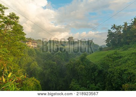 Sun is rising above lush jungle with morning mist above river canyon
