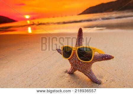 Starfish in sunglasses on sea beach at sunset, Bali, Seminyak, Double six beach