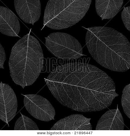 Dried leafs seamless background - seamless pattern for continuous replicate. See more seamless patterns in my portfolio.