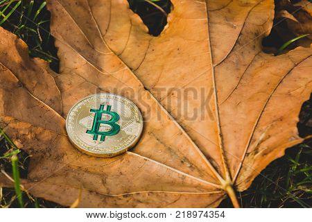 Bitcoin has fallen, the concept of the fall of bitcoin prices