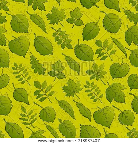 Seamless Background with Green and Contours Leaves of Various Plants, Trees and Shrubs, Nature Tile Pattern for Your Design. Vector