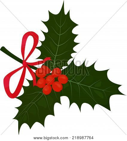 Twig with Red Bow of Holly or Ilex with Leaves and Berries Isolated on white. Vector illustration.