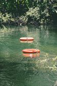 Life buoys floating on waters of Formoso river a river with transparent green water surrounded by nature on Bonito MS Brazil. Safety scenery. poster