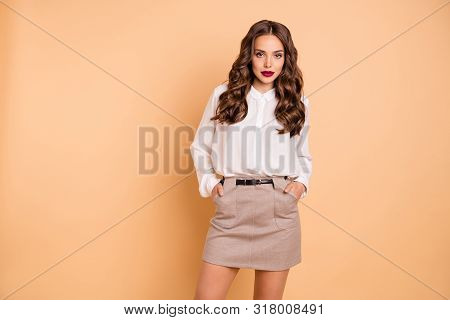 Portrait of her she nice-looking attractive lovely chic lovable pretty winsome perfect shine content bossy well-groomed lady isolated over beige pastel background poster